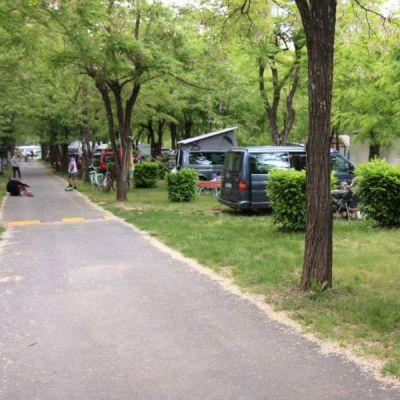Camping Les Actinidias